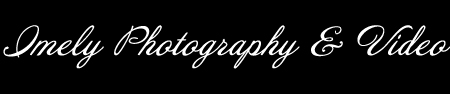 Sarasota Wedding Portrait Photographer logo